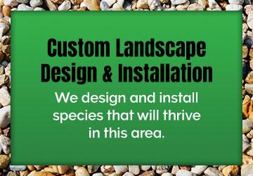 Custom Landscape Design & Installation